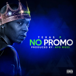 MIXTAPED RAP AND HIP HOP OF THE WEEK: 'Texas P' is back and this time he is lord with new drop 'No Promo'